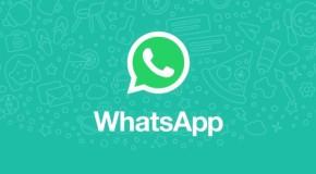 Cum să nu mai fi adăugat într-un grup, pe WhatsApp, fără voia ta