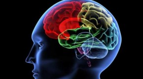 Cel mai bun antrenament pentru creier: doar aşa puteţi preveni demenţa