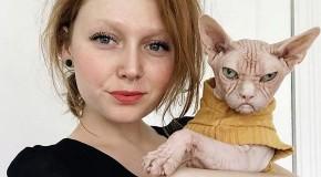Așa arată cea mai morocănoasă pisică din lume!