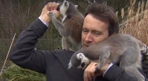 Un jurnalist a vrut să filmeze un material la o grădină zoologică, dar lucrurile au luat-o razna! (VIDEO)