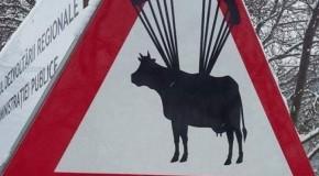 Cel mai bizar indicator rutier, fotografiat pe drumul spre Retezat