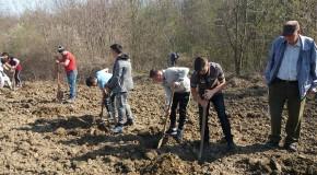 """Direcția Silvică Vaslui a dat startul """"Lunii Plantării Arborilor"""""""