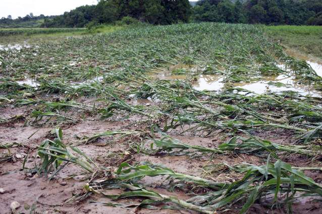 inundatii-terenuri-agricole-