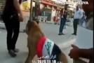 Daca Politia aduce caini, un tanar s-a dus la protest cu … leul (Video)