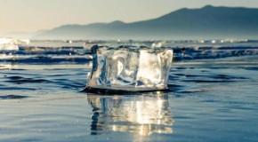Recordul de temperatură din Arctica a fost confirmat. Un studiu arată că Pământul nu a fost niciodată atât de cald în ultimii 12.000 de ani