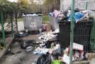 """Gunoaiele """"sufocă"""" unele platforme de depozitare a deșeurilor din Vaslui"""