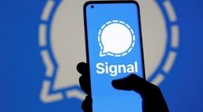 Aplicația de mesagerie Signal, blocată de numărul prea mare de utilizatori nou veniți